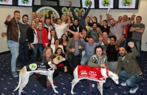 Irish Retired Greyhound Trust
