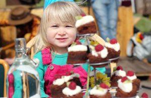 Castleconnell Street Feast