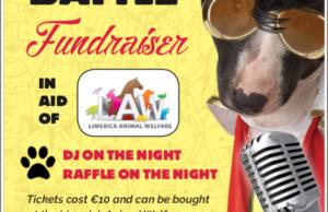 Limerick Animal Welfare Lip Sync Battle