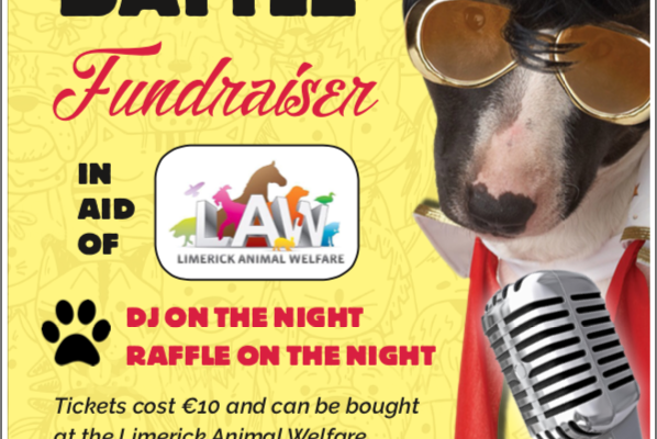 Limerick Animal Welfare Lip Sync Battle