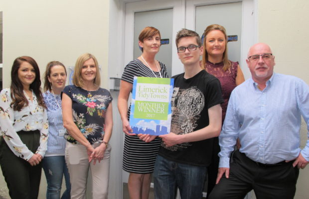 Tidy Towns June 2017