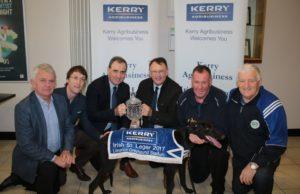 2017 Kerry Agribusiness Irish St Leger