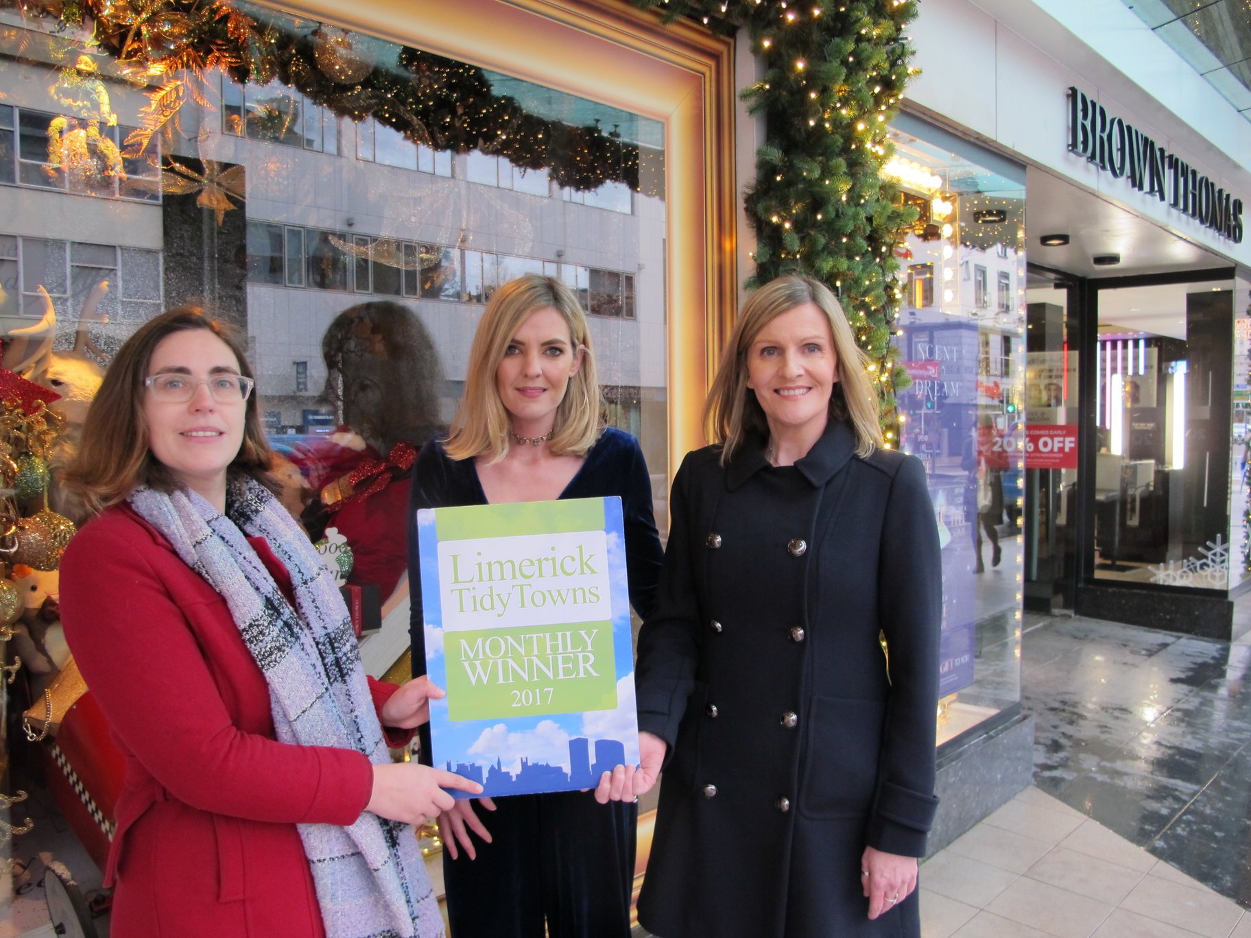 Limerick City Tidy Towns Final Monthly Award 2017