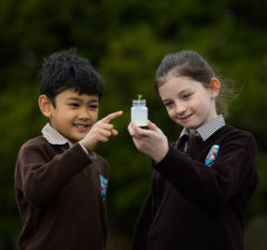 Limerick Primary Science Fair 2018