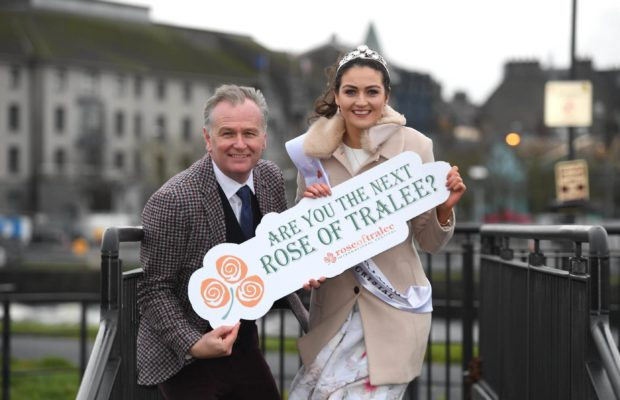 Limerick Rose 2018 search