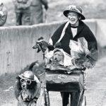 Dodo Reddan and her pram of dogs