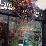 Lawless Flowers