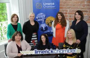 new Limerick Chamber website