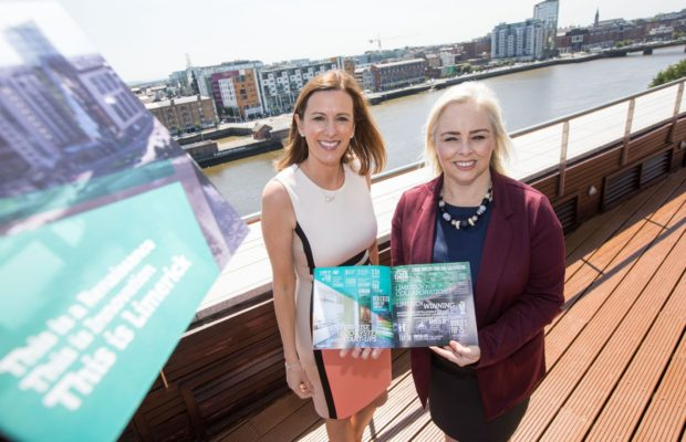 Limerick brochure