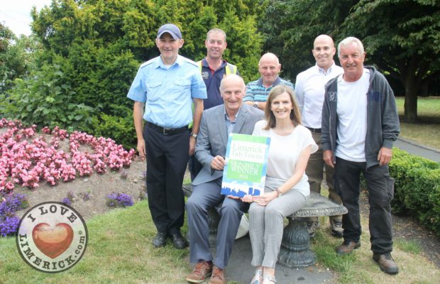 Tidy towns monthly award