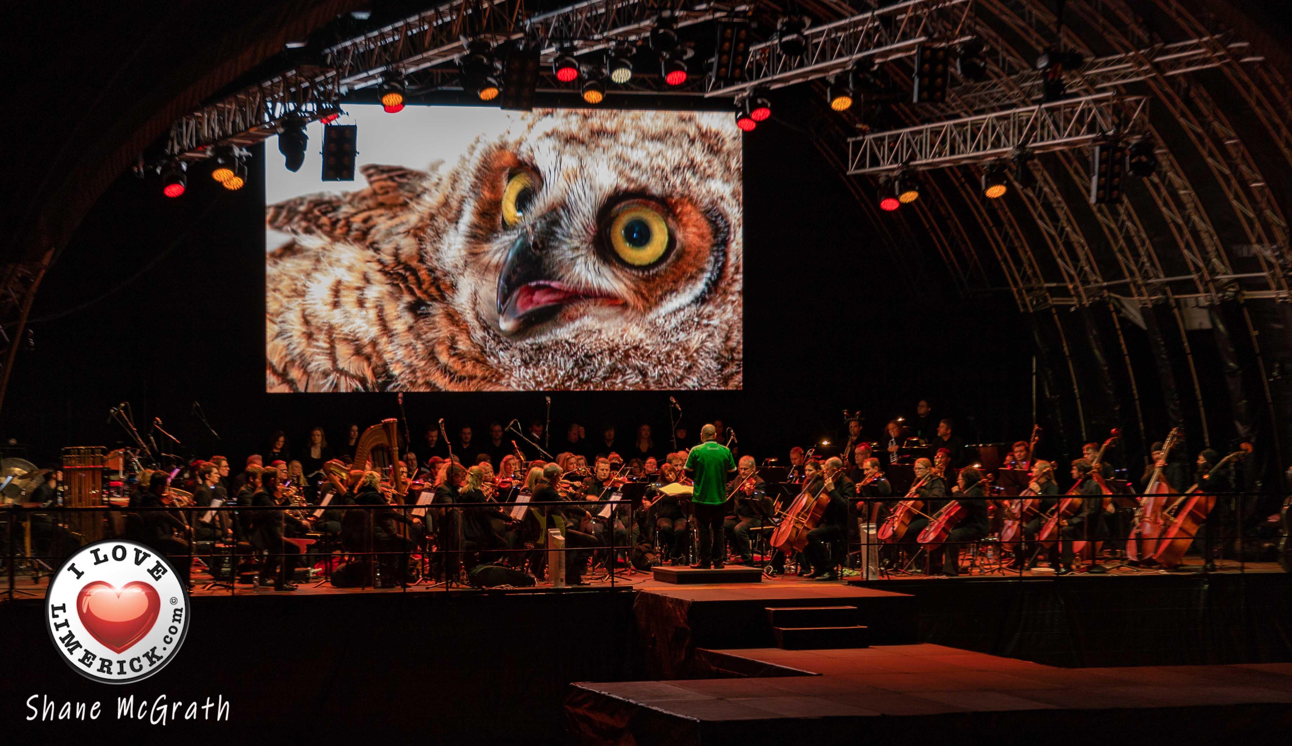 National Geographic Symphony Limerick