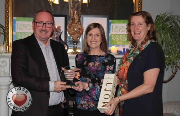 limerick tidy towns awards 2018