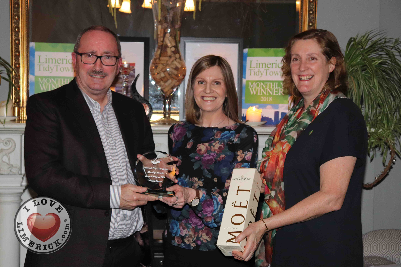 limerick tidy towns awards 2018