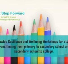School Transitioning Wellbeing workshop