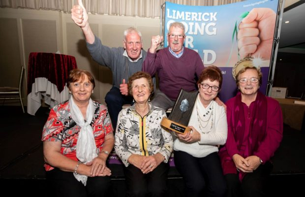 Limerick Going For Gold 2019 winners