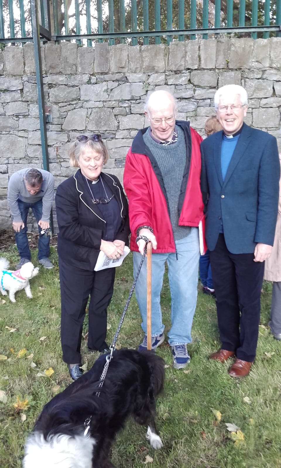 Limerick Blessing of Animals