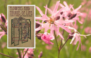Book Review Flowers and thorns of Life
