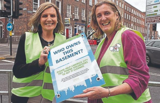 Limerick Tidy Towns competition 2020