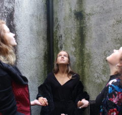 Limerick Youth Theatre Transition