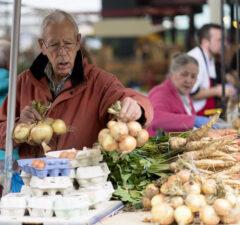 milk market to reopen