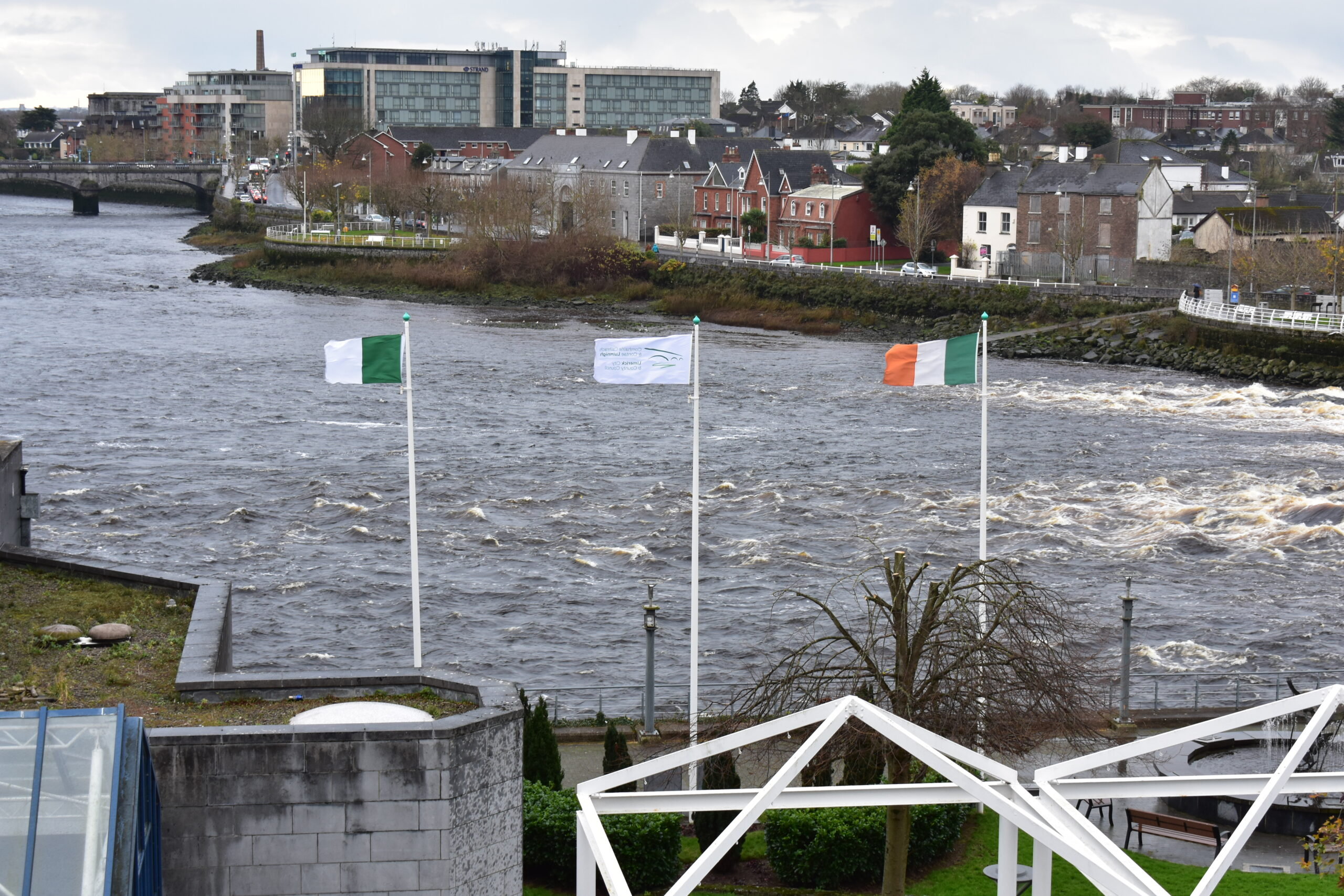 Limerick goes Green
