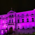 Linc Purple Lights Campaign