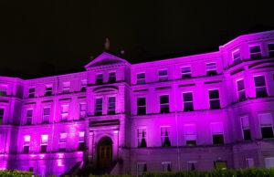 Linc Purple Lights Campaign