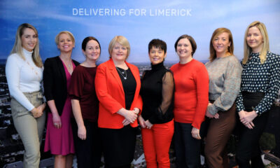 LEO Limerick online business training