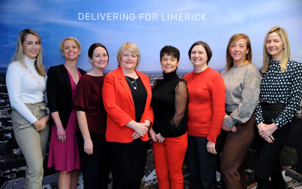 LEO Limerick online business training