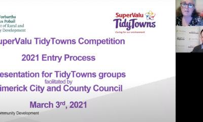 Tidy Towns webinar