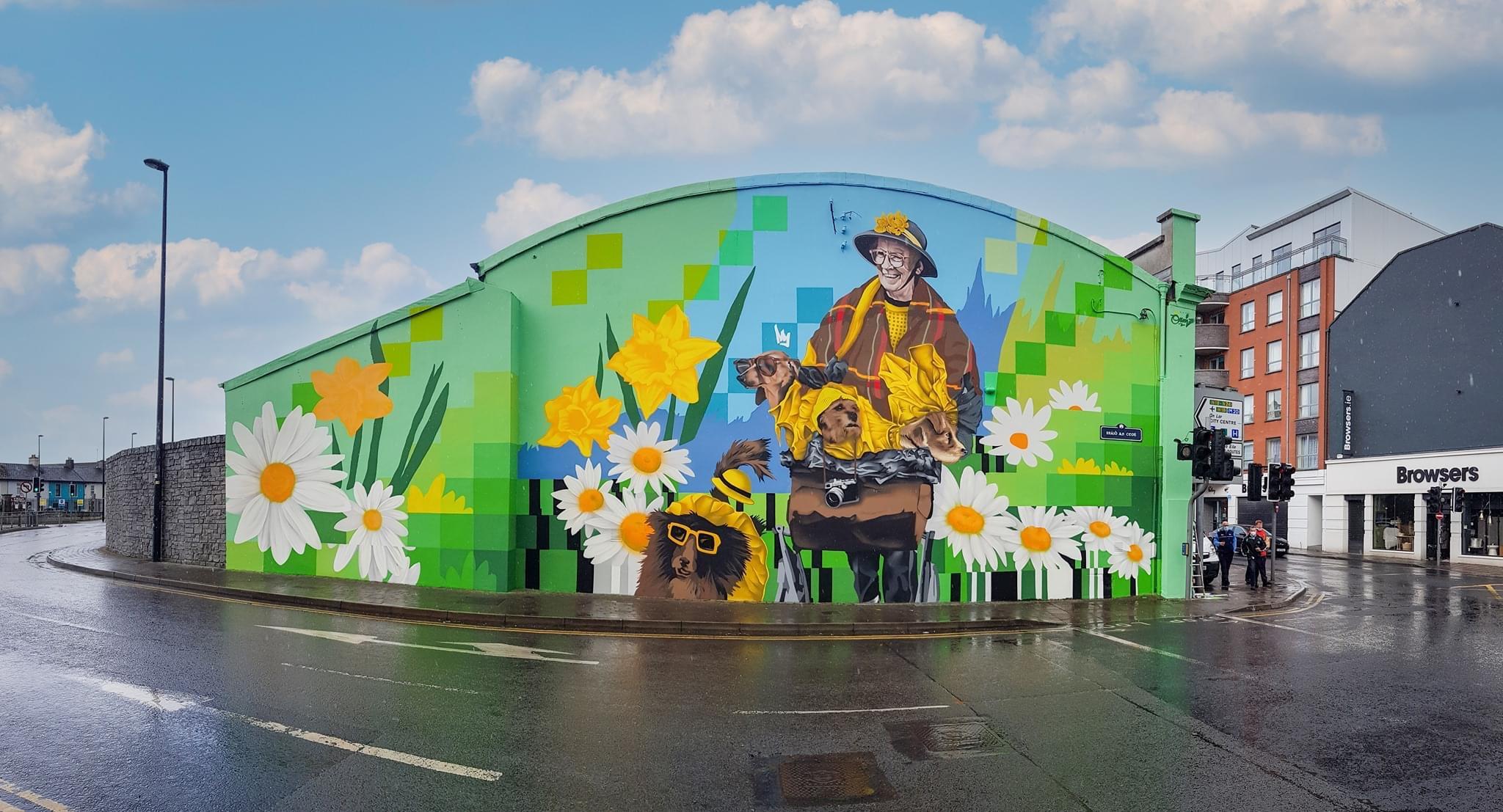 Dodo Reddan Mural at the top of William Street