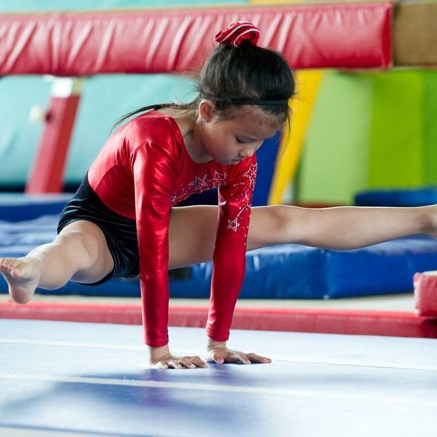 Limerick Gymnastics Club is a fun and progressive club catering for members aged four to late teens in a fully equipped training space