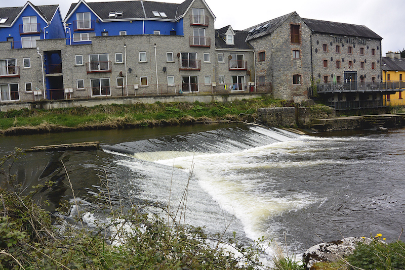 Annacotty Weir - Dr O'Connor said the weir was causing a major 'fish passage' problem for river lampreys and sea lampreys
