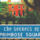 The Secrets of Primrose Square by Claudia Carroll, based on her book of the same name will be able available to stream from Wednesday July 7 to Saturday July 10 2021.