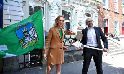 Limerick Chamber Go Green