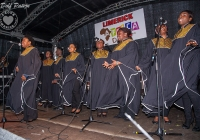 dolf_patijn_Limerick_Africa_Day_24052014_0074