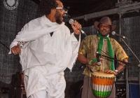 dolf_patijn_Limerick_Africa_Day_24052014_0090