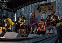 dolf_patijn_Limerick_Africa_Day_24052014_0258