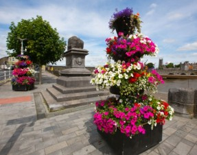 46 communities prepare for Limerick in Bloom judging stage