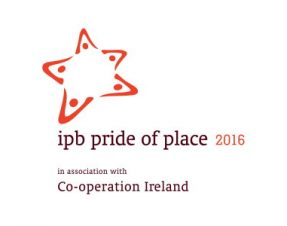 Four Limerick projects to take part in National Pride of Place Final