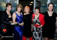 carers-masquerade-ball-2013-thomond-park_58