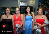 carers-masquerade-ball-2013-thomond-park_8