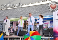 limerick-gay-games-bid-low-114