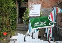 limerick-city-culture-showcase-78