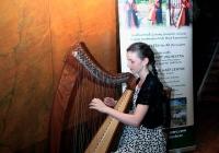 limerick-city-culture-showcase-83