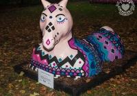dolf_patijn_Limerick_urban_horse_19092014_0002