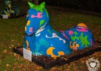 dolf_patijn_Limerick_urban_horse_19092014_0004