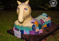 dolf_patijn_Limerick_urban_horse_19092014_0008