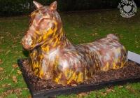 dolf_patijn_Limerick_urban_horse_19092014_0009