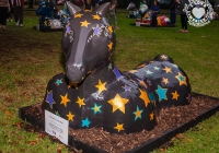 dolf_patijn_Limerick_urban_horse_19092014_0011